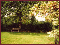 Barn Cottage - Garden